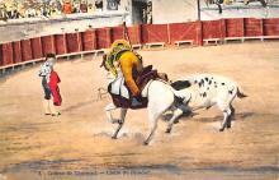 spof017409 - Course de Taureaux, Chute du Picacdor Tarjeta Postal Bullfighting