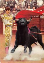 spof017465 - Bull Fight Tarjeta Postal Bullfighting