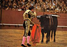 spof017485 - Toros, Ready for the Killing Tarjeta Postal Bullfighting