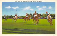 spof019018 - An interesting spofrt in the Southland, Linen Polo Postcard