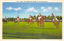spof019019 - An interesting spofrt in the Southland, Linen Polo Postcard