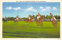 spof019026 - Polo an Interesting spofrt in the Southland Polo Postcard