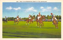 spof019028 - Polo an Interesting spofrt in the Southland Polo Postcard