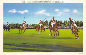 spof019034 - Polo Postcard  Polo Postcard