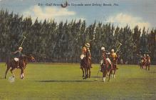 spof019036 - Gulf Stream Polo Grounds Polo Postcard