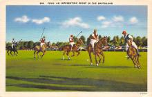 spof019038 - Polo an interesting spofrt in the Southland Polo Postcard