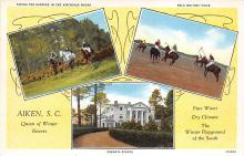 spof019040 - Fermata School, Polo Whitney Field Polo Postcard