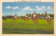 spof019042 - Polo an interesting spofrt in the Southland Polo