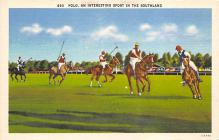 spof019046 - Polo an interesting spofrt in the Southland Polo