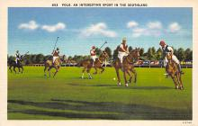 spof019065 - Polo an interesting spofrt in the Southland Polo