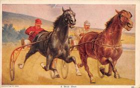 spof021004 - Horse Racing, Trotters,  Postcard