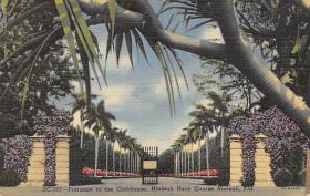 spof021034 - Hialeah, Florida USA Horse Racing Postcard