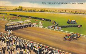 spof021037 - Miami Florida USA Horse Racing Postcard