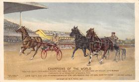 spof021042 - Trotters Racing Horse Racing Postcard