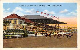 spof021052 - Hialeah Park, Miami FL USA Horse Racing Postcard