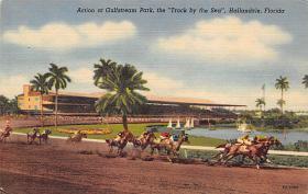 spof021054 - Hallandale, Florida USA Horse Racing Postcard