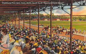 spof021057 - Myrtle Beach, SC USA Horse Racing Postcard