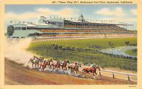 spof021058 - Inglewood, Cal, USA Horse Racing Postcard
