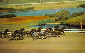 spof021072 - Inglewood, Cal, USA Horse Racing Postcard