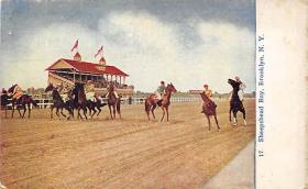 spof021081 - Sheepshead Bay, Brooklyn, NY, USA Horse Racing Trotter, Postcard