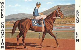 spof021085 - Brad Len Horse Racing Trotter, Postcard