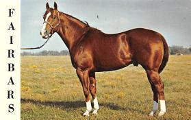 spof021086 - Fairbars Horse Racing Trotter, Postcard