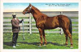 spof021087 - Man 'O War The Wonder Horse Horse Racing Trotter, Postcard