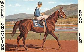 spof021092 - Brad Len Horse Racing Trotter, Postcard