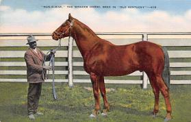 spof021097 - Man 'O War The Wonder Horse Horse Racing Trotter, Postcard