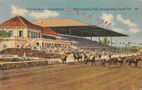 spof021101 - Miami Jockey Club, Hialeah Race Track, Florida USA, Horse Racing, Trotters,  Postcard