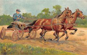 spof021319 - Horse Racing, Trotters,  Postcard