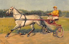spof021321 - Trotter Horse Racing Postcard