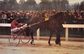 spof021405 - Andre Faure Horse Racing, Trotters, Postcard