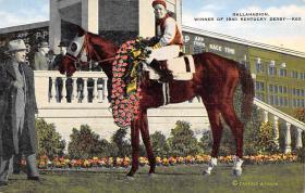 spof021409 - Gallahadion, Winner of Kentucky Derby, Horse Racing, Trotters, Postcard