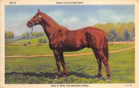 spof021418 - Man O'War the Wonder Horse, Horse Racing, Trotters, Postcard