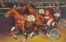 spof021425 - Maywood Park near Lake Michigan, USA Horse Racing, Trotters, Postcard