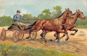 spof021440 - Horse Racing, Trotters, Postcard