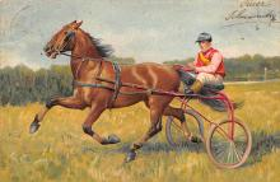 spof021450 - Horse Racing, Trotters, Postcard