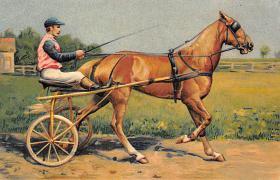 spof021455 - Horse Racing, Trotters, Postcard