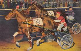spof021459 - Maywood Park near Lake Michigan, USA Horse Racing, Trotters, Postcard