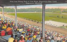 spof021463 - Hagerstown, Maryland, USA,  Race Track, Horse Racing, Trotters, Postcard
