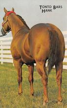 spof021464 - Tonto Bars Hank, tow time quarter running champion, Horse Racing, Trotters, Postcard
