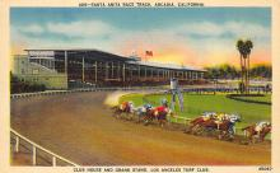 spof021482 - Santa Anita Race Track, Arcadia, California, USA Horse Racing Postcard