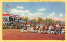 spof021492 - Race Track in Hot Springs Horse Racing, Trotter, Trotters, Postcard