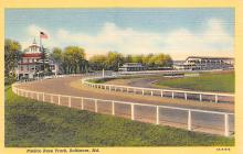 spof021496 - Pimlico Race Track Horse Racing, Trotter, Trotters, Postcard