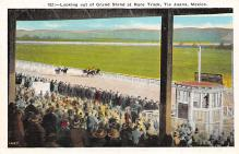spof021497 - Grand Stand at Race Track Horse Racing, Trotter, Trotters, Postcard
