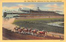spof021500 - Hollywood Turf Club Horse Racing, Trotter, Trotters, Postcard