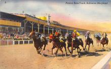 spof021506 - Pimlico Race Track Horse Racing, Trotter, Trotters, Postcard