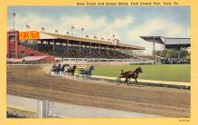 spof021512 - York County Fair Horse Racing, Trotter, Trotters, Postcard