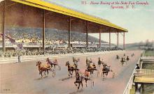 spof021513 - State Fair Grounds Horse Racing, Trotter, Trotters, Postcard